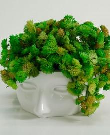 ARIEL Vase, Flower vase in the shape of a woman's head, Antartidee