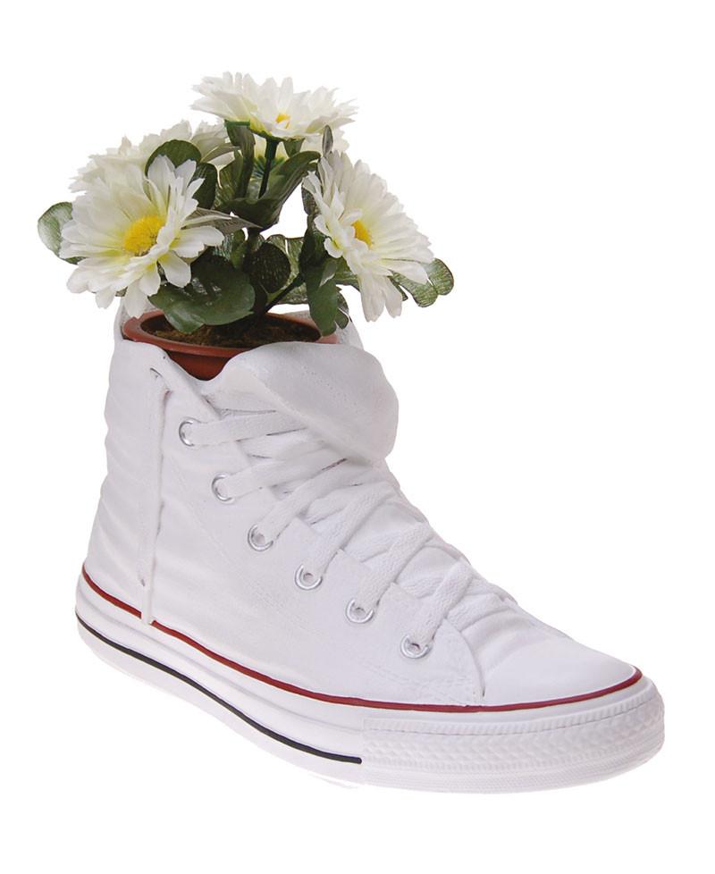 Vaso portaoggetti a forma di scarpa, sneakers Converse, Antartidee