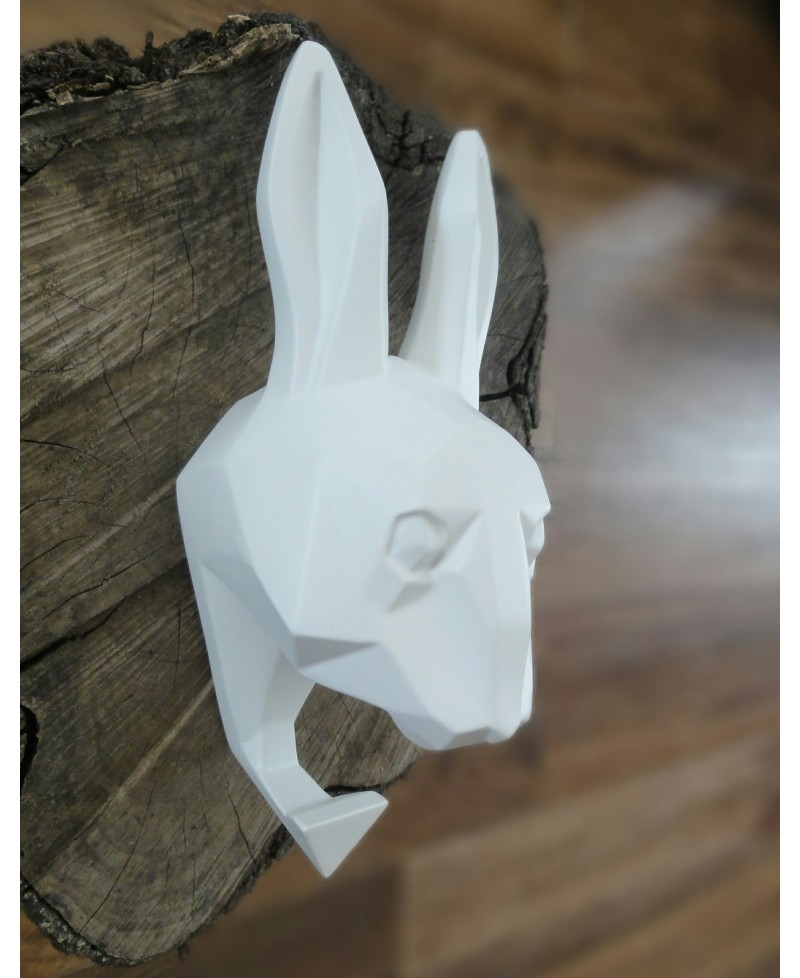 Rabbit hanger Antartidee